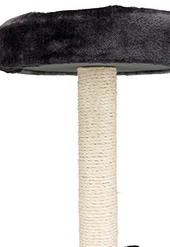 Trixie 43712 Tarifa Kratzbaum, 52 cm, grau/schwarz - 6