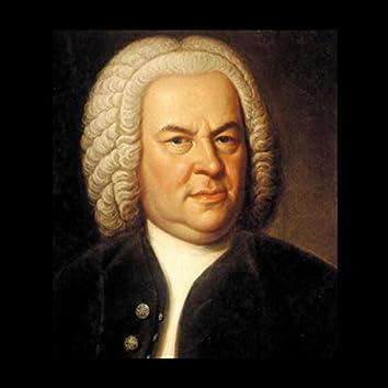 Bach - 24 Fugues for Organ