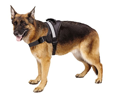 EXPAWLORER Big Dog Harness - Soft Reflective No Pull Black Size L 26-36 inch