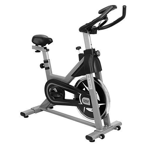 Altera Bicicleta Spinning Gimnasio Fitness Cardio Peso Rueda 13 Kg (Gris)