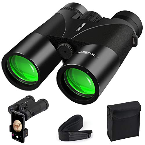 Best budget binoculars for bird watching