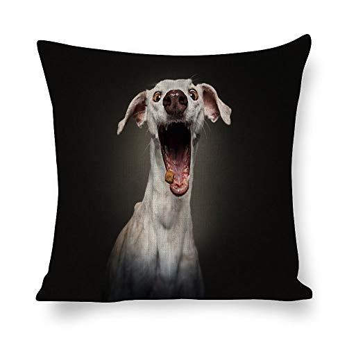 DONL9BAUER - Funda de almohada de lino con diseño de galgo italiano, diseño de boca grande, para sofá, salón, dormitorio, regalo de inauguración de la casa, 55 x 55 cm