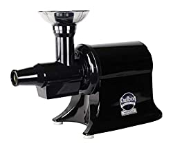 6 Best Champion Masticating Juicers