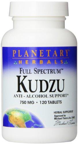 Planetary Herbals Kudzu, 750mg, 120 Tabletten, PTF873