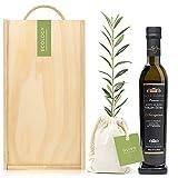 Set Gourmet Regalo Olivia Premium con árbol olivo natural para plantar y aceite de oliva virgen extra – Árboles para plantar – Regalos originales y naturales