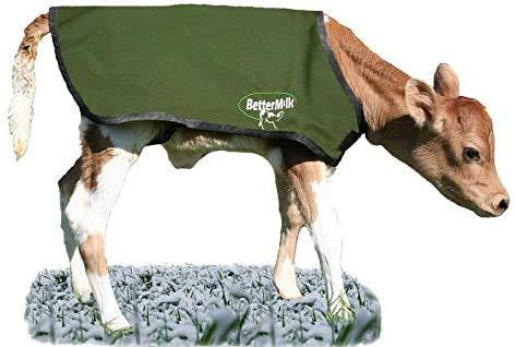 Bettermilk Couverture de protection imperméable pour bétail - Jersey vert - Taille S