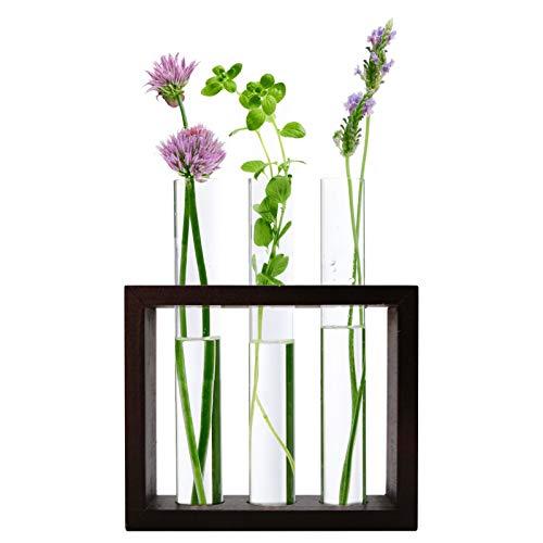 Banord Desktop Glass Terrarium Wall Hanging Glass Planter Only $9.99 (Retail $16.65)