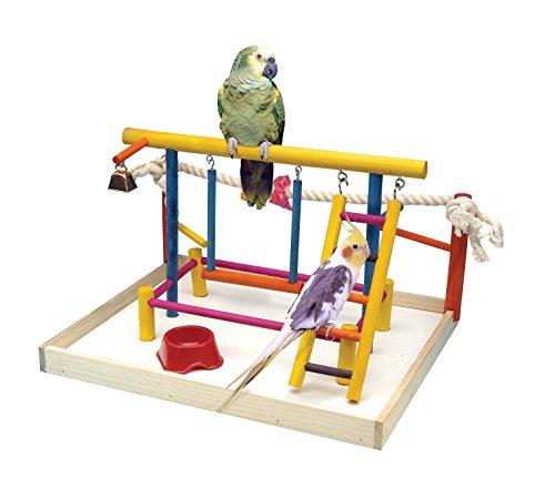 Penn-Plax Jouet pour Oiseau Centre d'activités avec perchoirs, échelles, Bell, et Corde Large 47 cm Hauteur