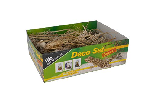 Lucky Reptile Life Experience Deco Set Wüste, Dekoartikel für Terrarien