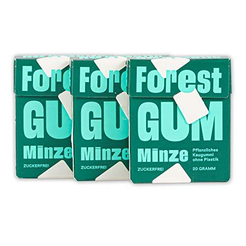 Pflanzlicher Minz Kaugummi - aus natürlichen Zutaten, ohne Zucker und ohne Plastik, Vegan (3 x 20g)