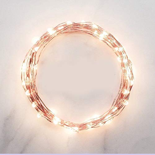 Surobayuusaku Copper Wire Battery Power 2m 20LED Flat Fairy String Light Wall Window Garden Christmas Decoration Party String Lamp