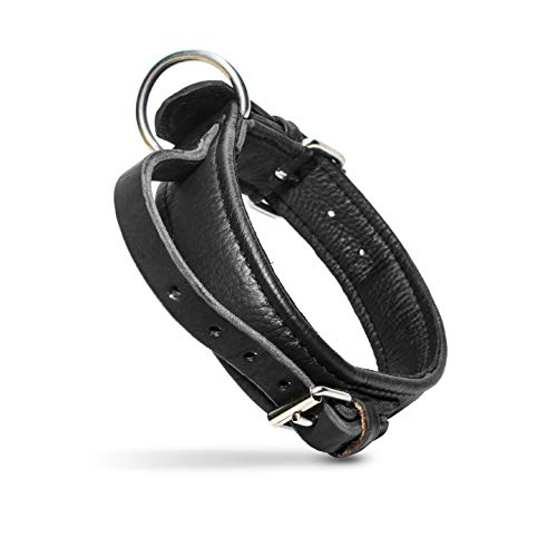 Julius-K9 Eco Leather Collar with Adjustable Handle, 40 mm x 55 cm