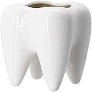 U/N ZhemeNing Cute Tooth Shape Ceramic Succulent Cactus Vase Flower Pot-Tooth Pencil Holder Office Organizer Gift for Dentist, Small Plant Container Packaging (Excluding Plants)