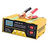 Car Battery Charger - 10A 12V 24V Automatic Smart Battery Charger Monitor Charge Maintain Battery for Lead Acid Battery or Lithium Battery