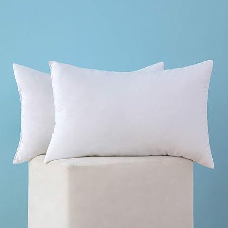 Throw Pillow Insert Rectangular Pillow Form Cushions  12x20