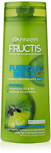 Garnier Fructis Shampoo Shampoo Kraft und Glanz 2-in-1 360 ml