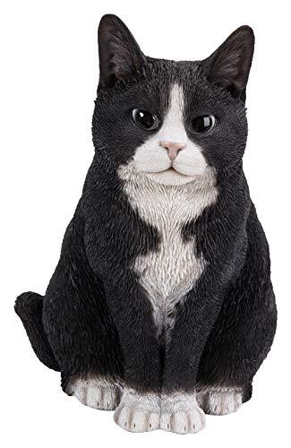Real Life seduto gatto nero/bianco di Vivid Arts