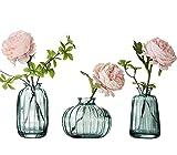 Juego de 3 jarrones pequeños para decoración de mesa (cristal), color verde