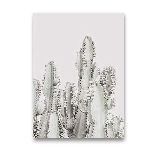 Pastel Cactus Plant Canvas Poster Wall Art Painting Cactus Photography Plant Prints Decoración del hogar 13x18cm