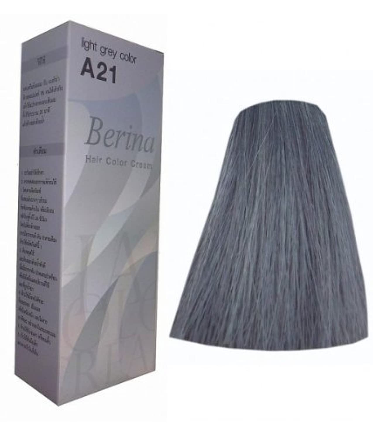 懲らしめ変成器盆Hair Colour Permanent Hair Cream Dye Light Ash Grey by Berina