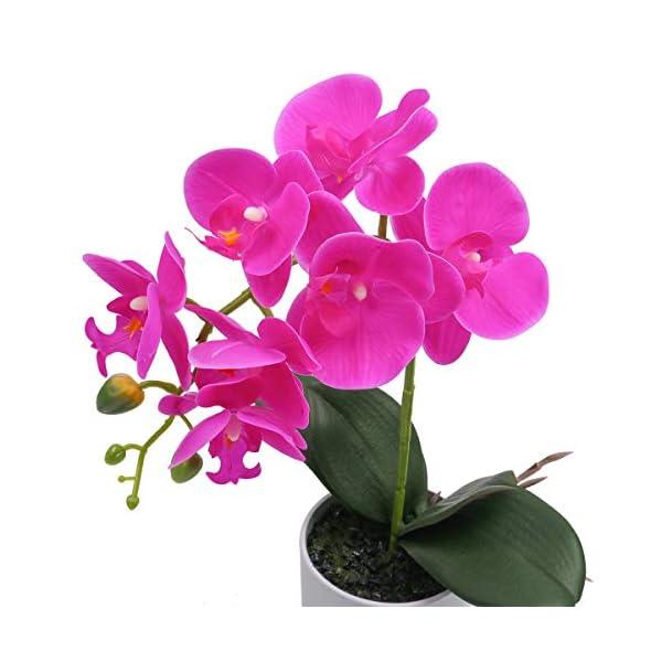 SHACOS Orquidea Artificial con Maceta Phalaenopsis Flores Artificiales Decorativas Grandes Plantas Orquideas Blancas…