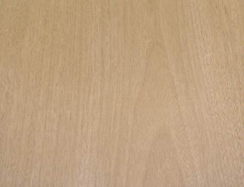 Mahogany wood veneer 24