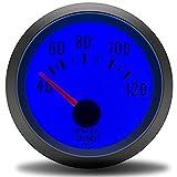 WANGXINQUAN Auto 2' 52mm Wassertemperaturanzeige Temperatur-Messgerät mit Sensor Temperatura Auto...