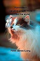 PURRRRRRFECT Cat photography