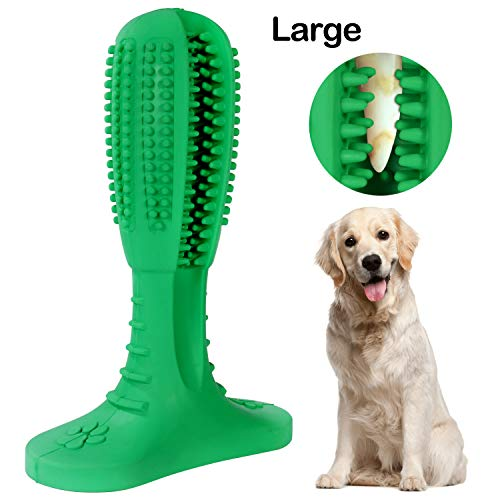 QPQEQTQ Upgraded Dog Toothbrush Chew Toys - Dog Teeth Cleaning Stick - Puppy Dental Care Brushing Toy - Natural Rubber Bite Resistant Dog Toothbrush Toy (Large, Green)