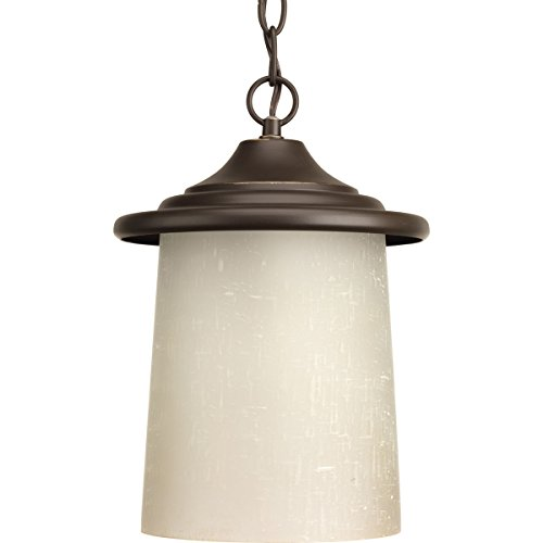 Progress Lighting P6512-20 Traditional/Casual 1-100W Med Hanging Lantern, Antique Bronze