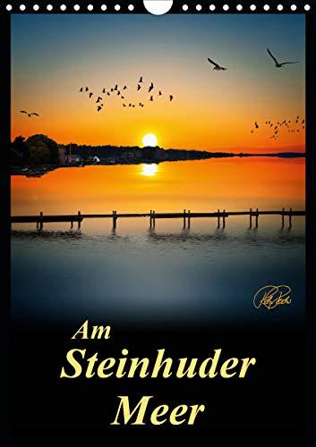 Am Steinhuder Meer/Planer (Wandkalender 2021 DIN A4 hoch)