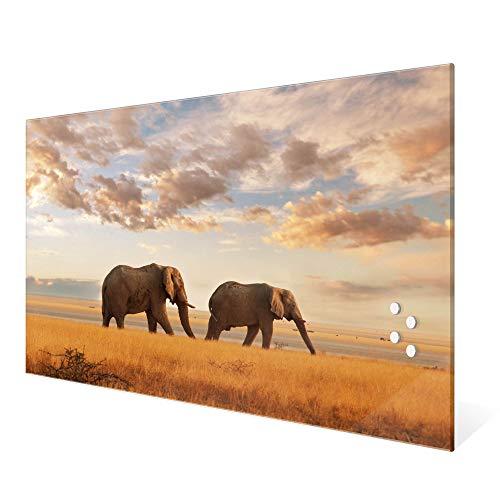 banjado Glas Magnettafel mit 4 Magneten | Magnetwand 60x40cm groß | Memoboard beschreibbar perfekt für die Küche | Magnetboard groß mit Motiv Elefanten