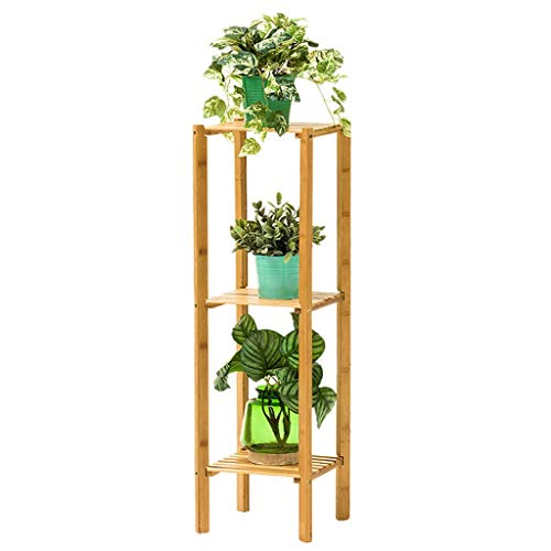 YXB Bloemen Stand Woonkamer Bamboe Balkon Vloerstaande Plant Stand Bloem Ladder Rek Met 2/3 Tiers Eenvoudige Plank (Maat: 2 lagen)