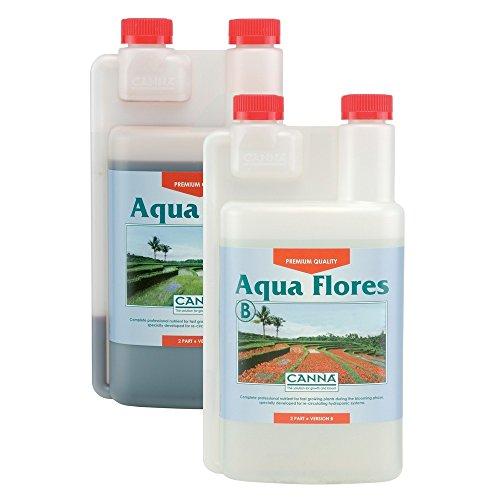 Canna Aqua Flores A et B 1