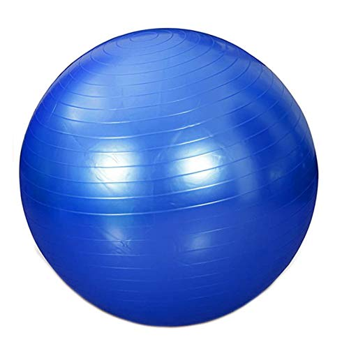 Exercise Ball Large Size 95cm Thick Stability Balance Yoga Ball for Fitness Anti-Burst, Slip-Resistant Swiss Ball Slimming Yoga with Quick Pump (Blue)