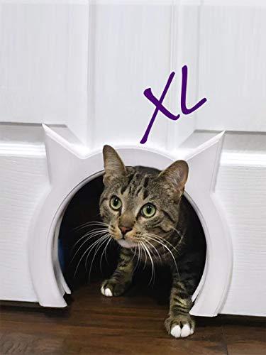 Puerta de gato grande de Kitty Pass XL, interior grande para mascotas con puerta oculta.