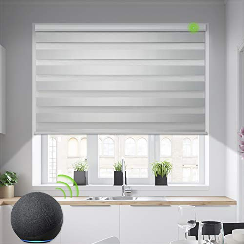 Yoolax Motorized Zebra Blinds Works with Alexa, Light Filtering Day and Night Dual Layer Sheer...