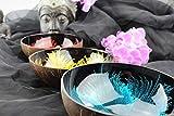 Batriozo Hochwertige Dekoschale - Echte Kokosnuss Schale - Edles Design - 100% Handarbeit - Vielseitig Einsetzbar - Buddha Bowl - Unikat - Blau - 2