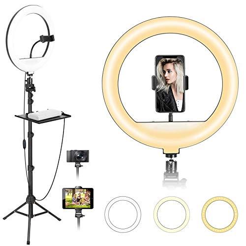 BONFOTO Ringleuchte, 12 Zoll / 30cm 20W dimmbare LED-Ringlicht mit Handyhalter und 170cm Stativ, 3 Beleuchtungsmodi & 10 Helligkeitsstufen für Fotografie/YouTube Video/TikTok/Live-Stream/Makeup