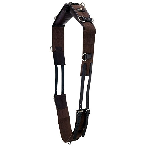 Tough 1 Professional Leather with Cotton Web Training Surcingle