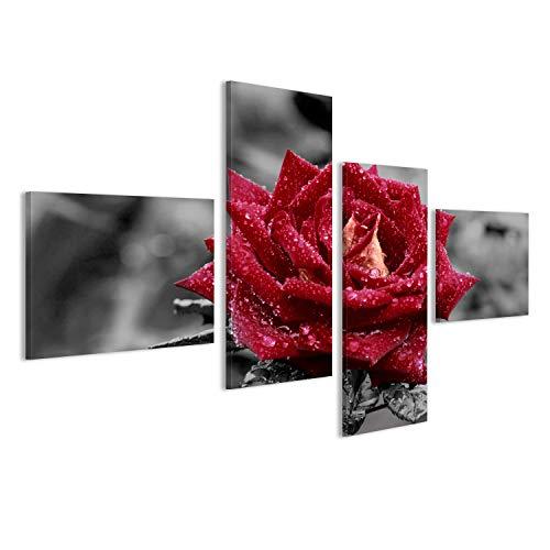 islandburner Bild Bilder auf Leinwand rote Rose vor grauem Hintergrund Poster, Leinwandbild, Wandbilder