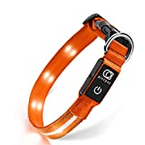 Piccpet LED Dog Collar