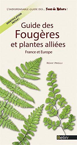 Guide des fougères et plantes alliées