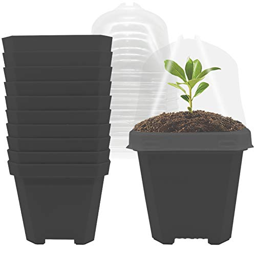 EBaokuup 4quot Plastic Plant Nursery Pots with Humidity Dome 10PCS Soft Transparent Plastic Gardening Pot Plant Container Seed Starting Pot with drain holes for Seedlings/Vegetables/Succulents/Cuttings