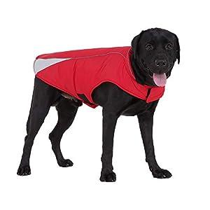 Oncpcare Manteau d'hiver réfléchissant pour Chien - pour Chiens de Petite, Moyenne et Grande Taille