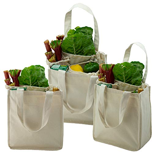 Simple Ecology Organic Cotton Deluxe Reusable Grocery Shopping Bag with Bottle Sleeves  Natural 3 Pack Heavy Duty Washable Durable Handles Foldable Craft amp Gift Bag 6 Bottle Wine Bag Carrier