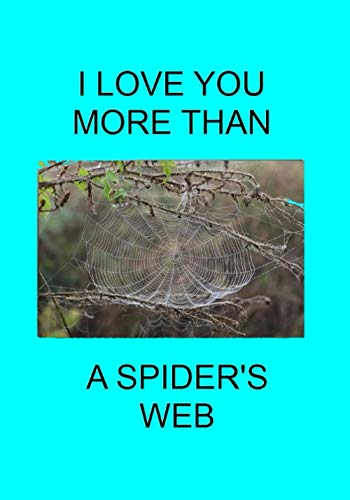 I LOVE YOU MORE THAN A SPIDER'S WEB: NOTEBOOKS MAKE IDEAL...