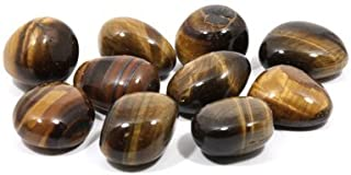 CrystalAge Tiger Eye Tumble Stones (20-25mm) - Pack of 5