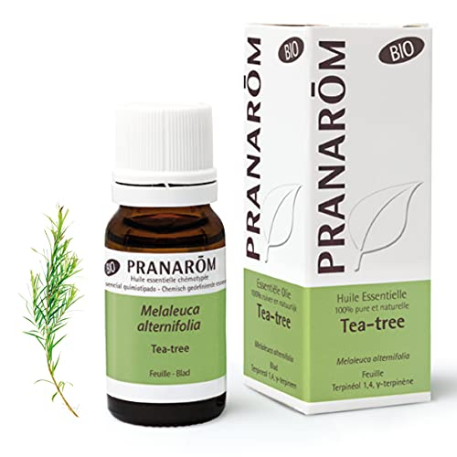 huile essentielle tea tree carrefour