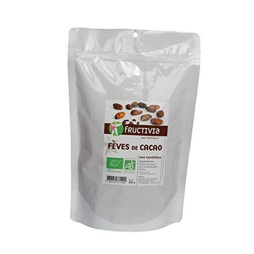 FRUCTIVIA - Fèves De Cacao Non Torréfiées Bio 500G